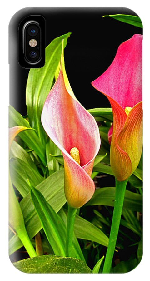 Nature IPhone X Case featuring the photograph Calla Lillies by Debbie Portwood