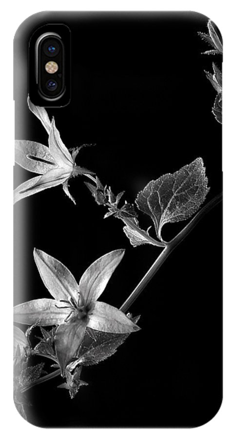 Flower IPhone X Case featuring the photograph Campanula In Black And White by Endre Balogh