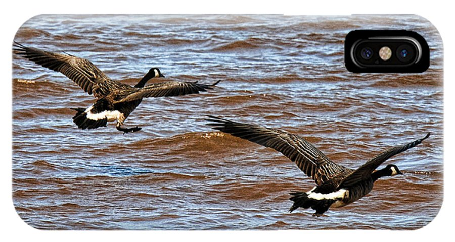 Canada IPhone X Case featuring the photograph Canada Geese In Flight Lake Superior by Lawrence Christopher