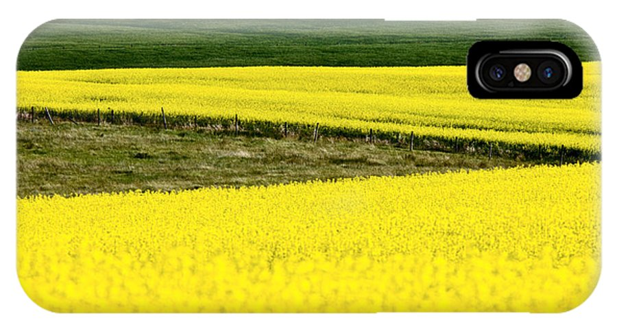 Canola IPhone X Case featuring the photograph Canola Crop by Mark Duffy