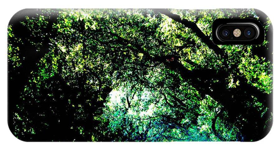 Live Oak IPhone X Case featuring the photograph Canopy by Lizi Beard-Ward