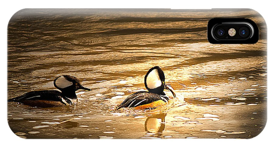 Hooded Mergansers IPhone X Case featuring the photograph Cant Catch Me by Randall Branham