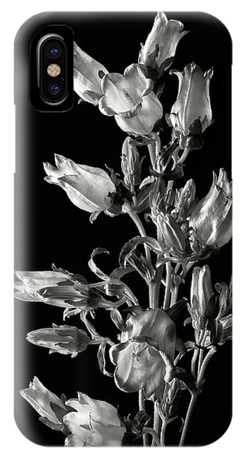 Flower IPhone X Case featuring the photograph Canterbury Bells In Black And White by Endre Balogh
