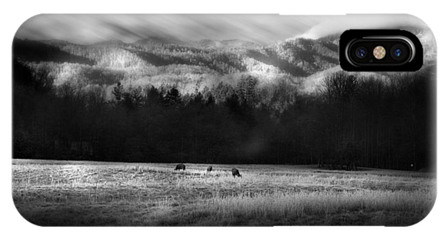 Cataloochee IPhone X Case featuring the photograph Cataloochee Elk Grazing The Fields by Gray Artus