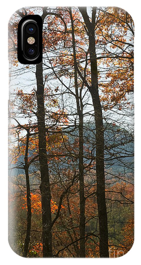 Trees; Deciduous; Leaves; Color; Fall; Autumn; Seasonal Color; Seasons; Appalachian; Mountains; Forest; Landscape; Peak Fall Color; Southeast; Landscape IPhone X Case featuring the photograph Cathedral Of Trees by John Arnaldi