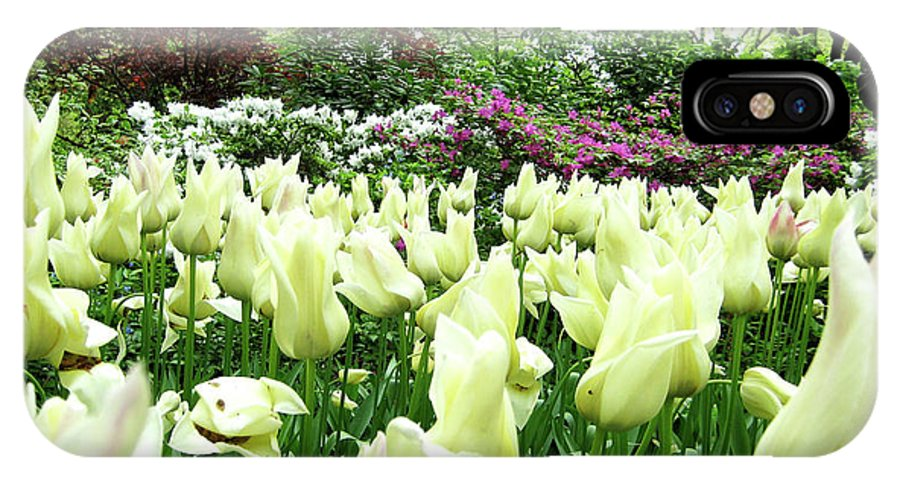 Central Park IPhone X / XS Case featuring the photograph Central Park Tulips by Lorraine Devon Wilke