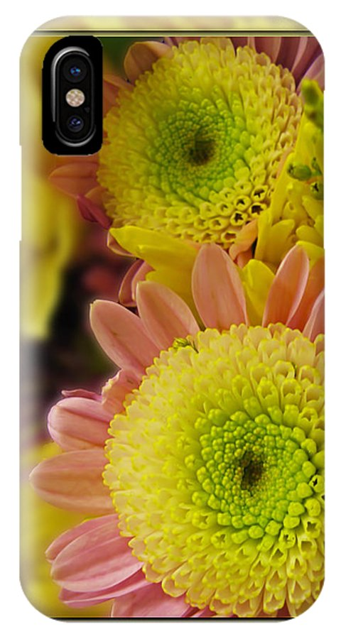 Nature IPhone X Case featuring the photograph Cheer Up by Debbie Portwood