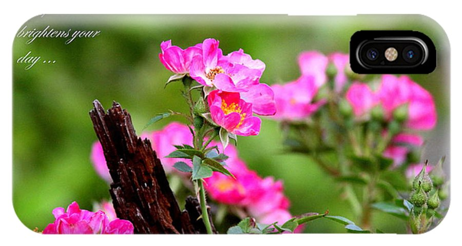 Flower IPhone X Case featuring the photograph Cherokee Rose Card - Flower by Travis Truelove