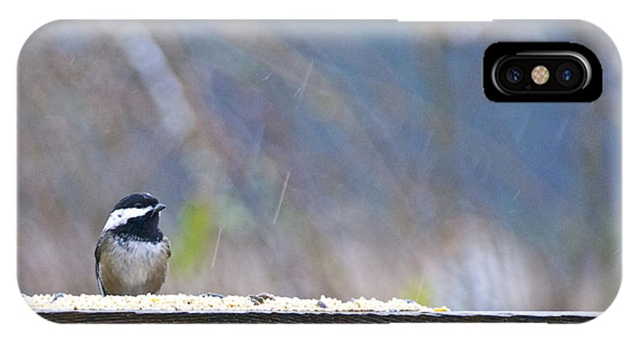 Photography IPhone X Case featuring the photograph Chestnut-backed Chickadee In The Rain by Sean Griffin