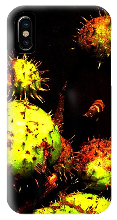 Black IPhone X Case featuring the painting Chestnut Pods 3 by Renate Nadi Wesley
