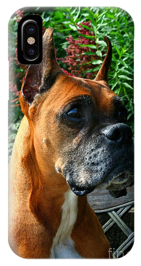Dog IPhone X Case featuring the photograph Classic Boxer by Susan Herber