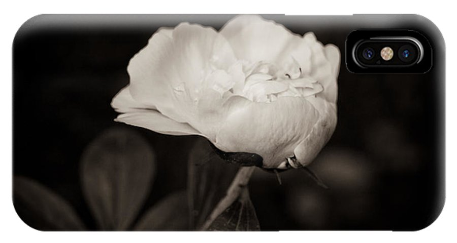 Peony Photo IPhone X Case featuring the photograph Classic Peony by Sara Frank