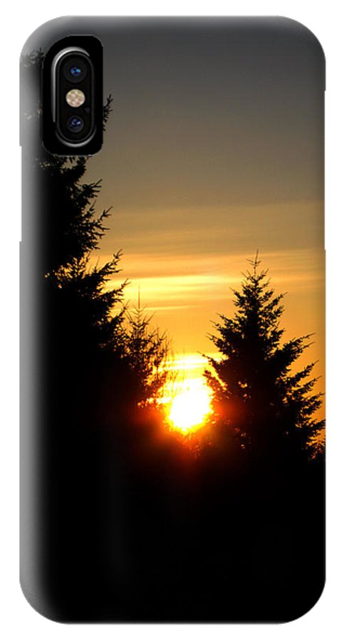 Landscape IPhone X Case featuring the photograph Clearing The Trees In The Morning by Carlene Salazar