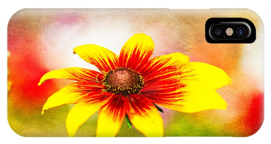 Floral IPhone X Case featuring the photograph Clown Face by Randy Wood