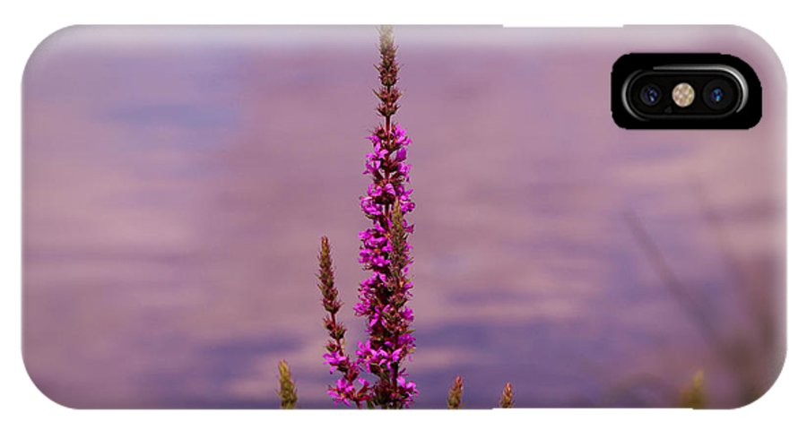 Color By The River IPhone X Case featuring the photograph Color By The River by Rachel Cohen