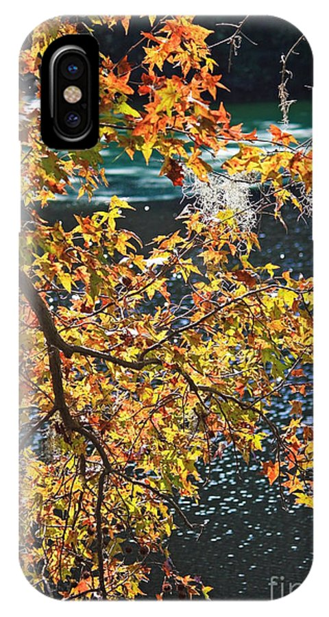 Fall Leaves IPhone X Case featuring the photograph Colorful Fall Leaves Over Blue Water by Carol Groenen