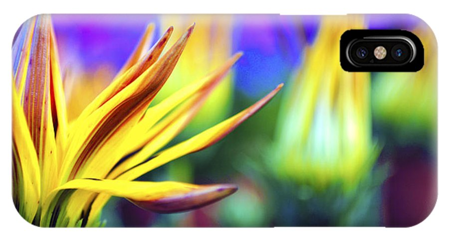 Colorful IPhone X Case featuring the photograph Colorful Flowers by Sumit Mehndiratta