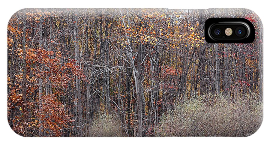Fall Colors Similar Beautiful Matching Autumn IPhone X Case featuring the photograph Colors Galore by Vilas Malankar