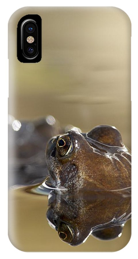 Amphibian IPhone X / XS Case featuring the photograph Common Frog (rana Temporaria) In Pond by Adrian Bicker