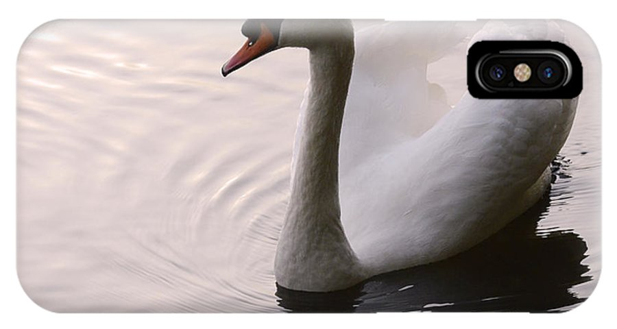Swan IPhone X Case featuring the photograph Completely Elegant by Bob Christopher