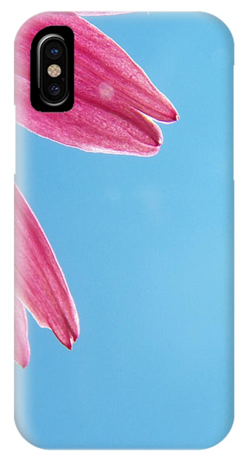 Flowers IPhone X Case featuring the photograph Cone Flower And Blue Sky by Corinne Elizabeth Cowherd