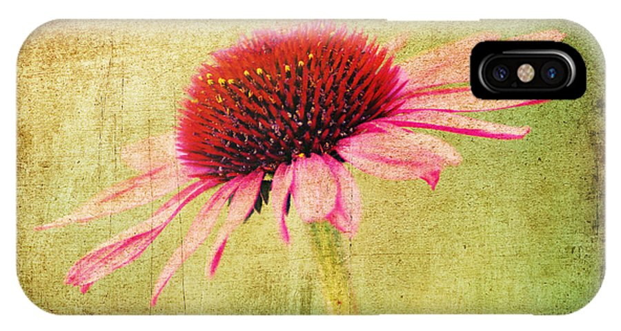 Bloom IPhone X / XS Case featuring the photograph Cone Flower by Darren Fisher
