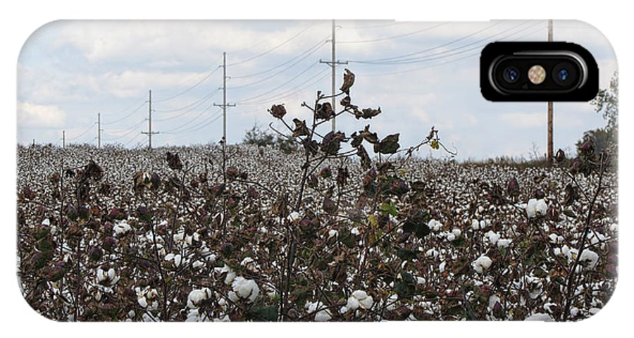 Cotton IPhone X Case featuring the photograph Cotton Ready For Harvest In Alabama by Kathy Clark