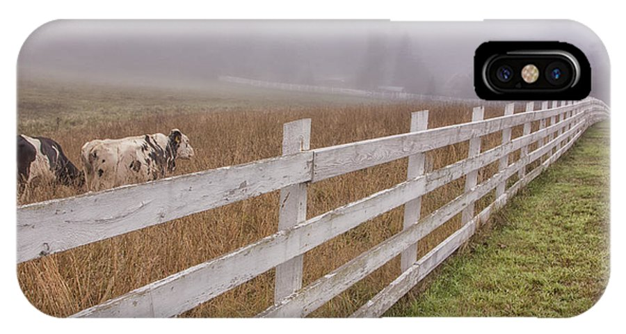 Vernon Vermont IPhone X Case featuring the photograph Cows And Fog by Tom Singleton