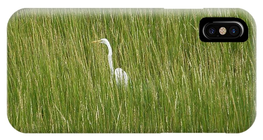 Crane IPhone X Case featuring the photograph Crane In The Tall Grass On Assateague Island Maryland by Sven Migot
