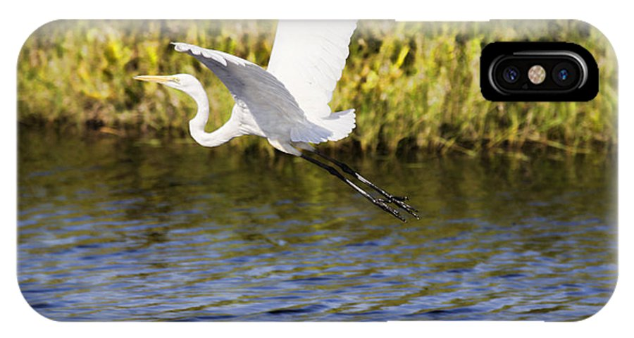 Egret IPhone X Case featuring the photograph Crossing The Billabong V2 by Douglas Barnard