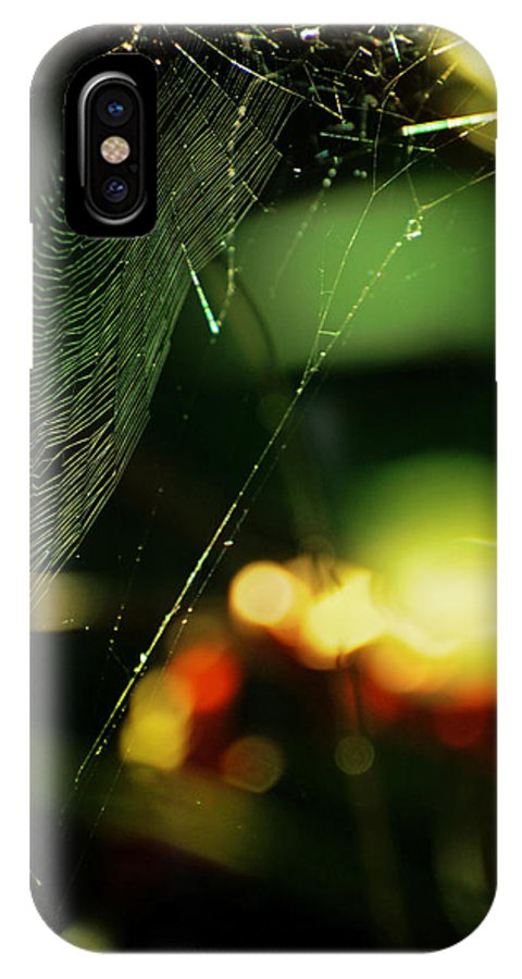 Spiderweb IPhone X / XS Case featuring the photograph Crown'd by Rebecca Sherman