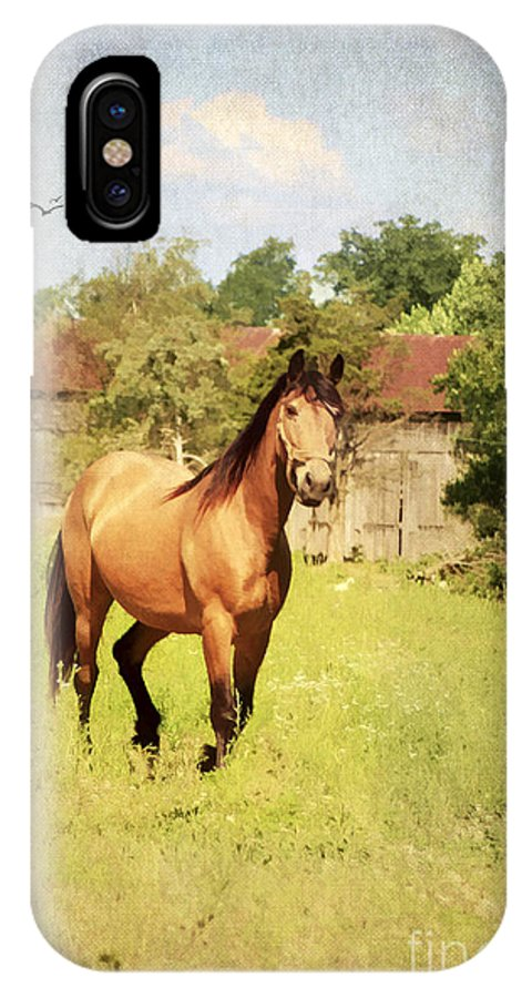 Active IPhone X Case featuring the photograph Curious by Darren Fisher