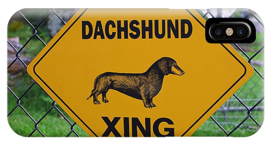 Signs IPhone X Case featuring the photograph Dachshund Crossing by Mary Deal