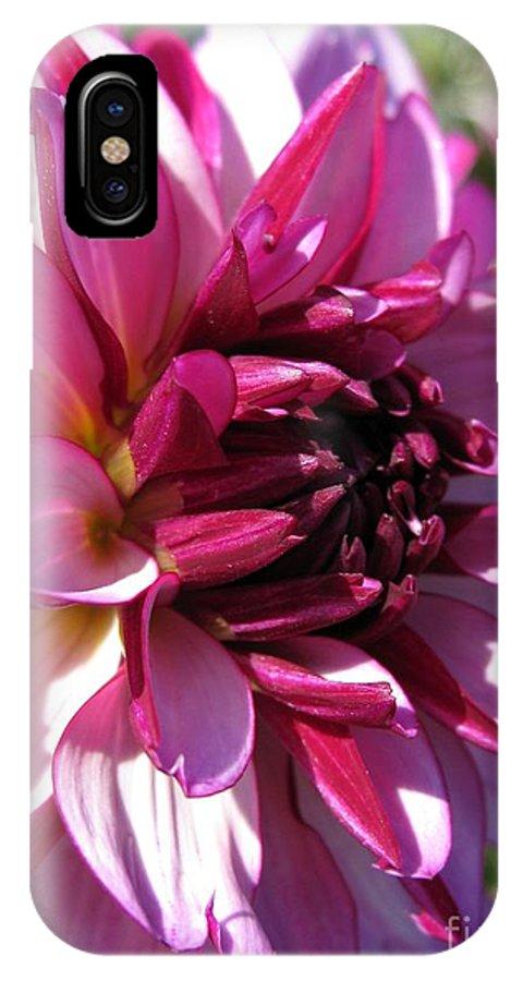 Dahlia IPhone X Case featuring the photograph Dahlia Named Lauren Michelle by J McCombie