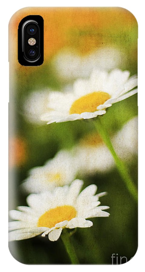Angel IPhone X / XS Case featuring the photograph Daisies by Darren Fisher