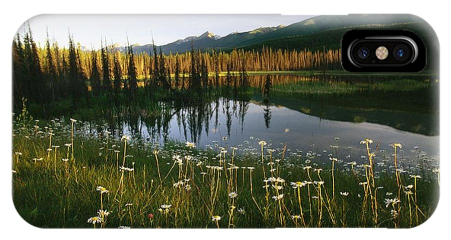 Day IPhone X / XS Case featuring the photograph Daisies Grow Near A Lake In Yoho by Michael Melford
