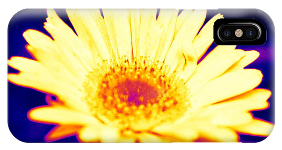 Daisy IPhone X Case featuring the photograph Daisy In Neon by J Kinion
