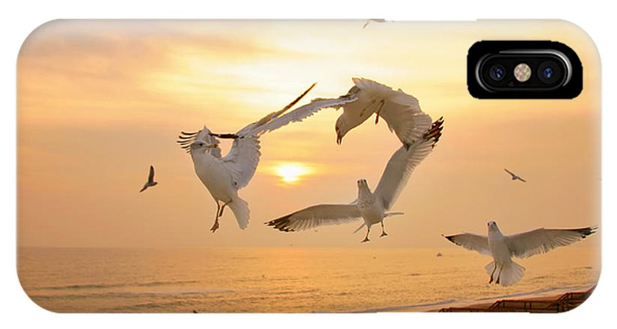 Seagulls IPhone X Case featuring the photograph Dancing Seagulls by Mary Almond