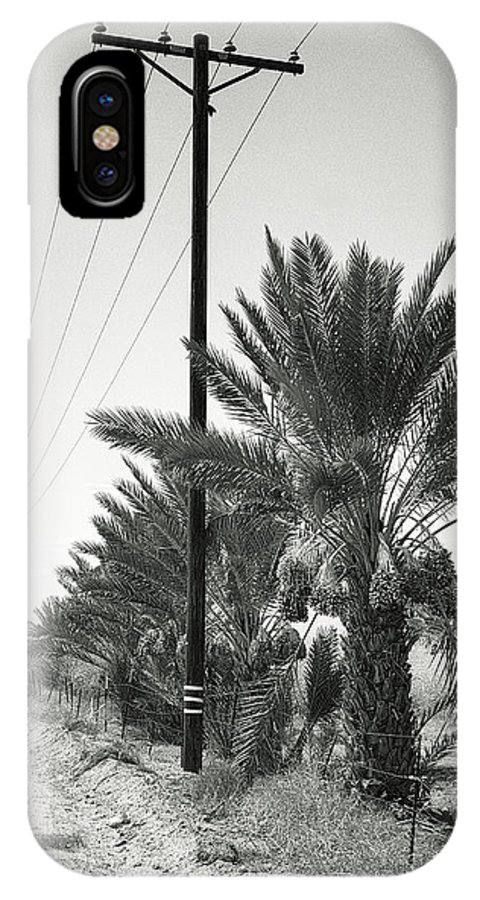 Date Palms IPhone X Case featuring the photograph Date Palms On A Country Road by Dominic Piperata