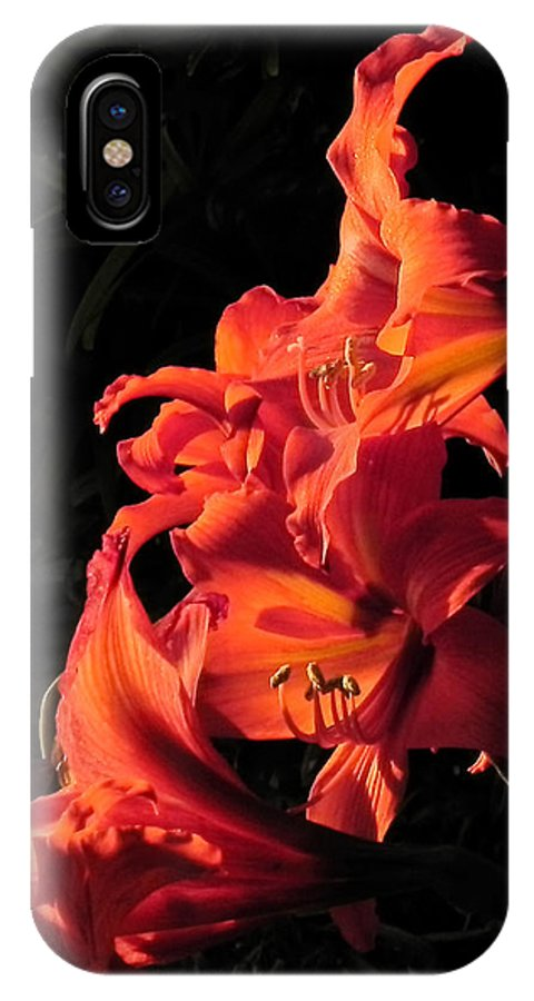 Flowers IPhone X Case featuring the photograph Day Lily Flame by Francesa Miller