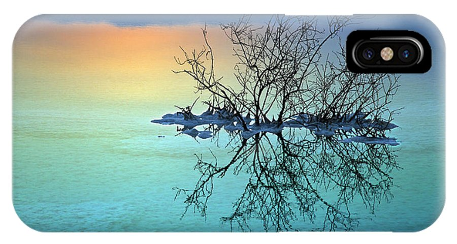 Sunrise IPhone X / XS Case featuring the digital art Dead Sea - Withered Bush At Dawn by Eldad Carin