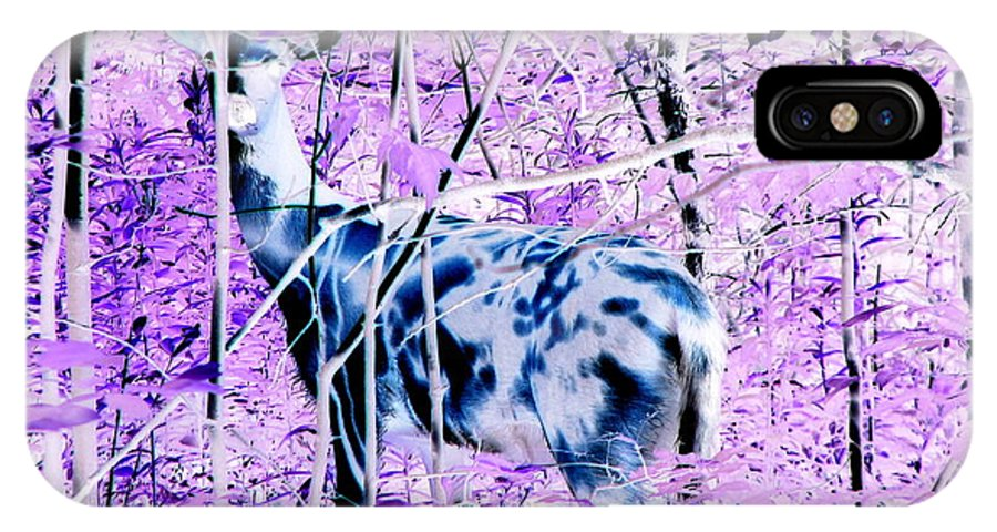 Deer IPhone X Case featuring the photograph Deer In The Woods Inverted Negative Image by Rose Santuci-Sofranko