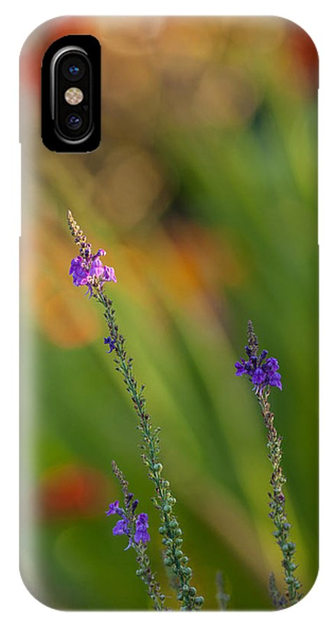 Flower IPhone X Case featuring the photograph Delicate And Vivid by Mike Reid