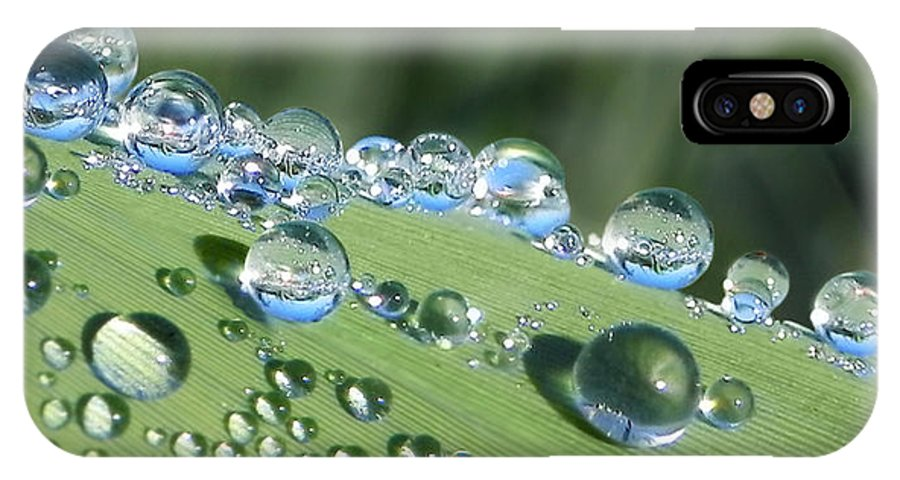 Beads IPhone X Case featuring the photograph Dew Beads by Francesa Miller