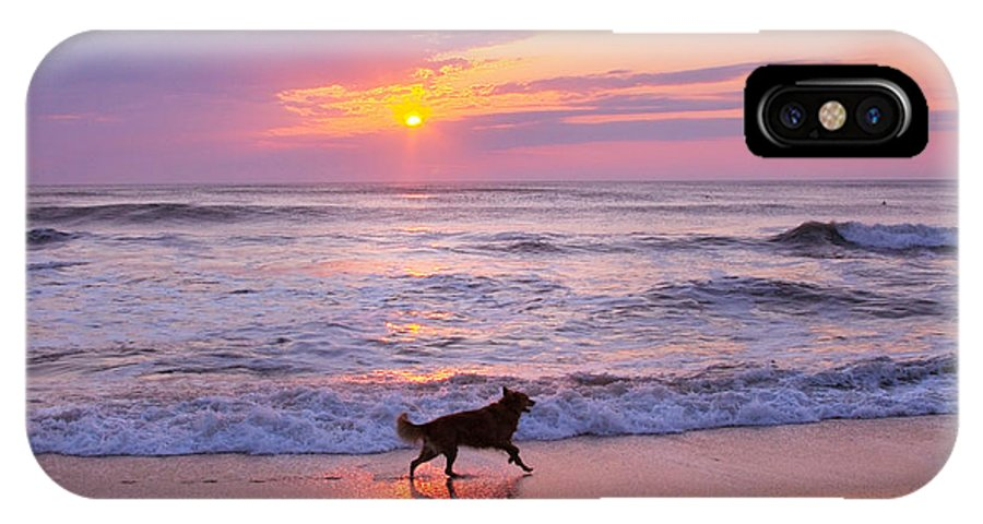 Dog IPhone X Case featuring the photograph Dog At Play by Mary Almond