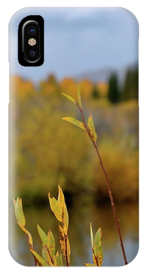 Autumn IPhone X / XS Case featuring the photograph By The River by Beverley Harper Tinsley