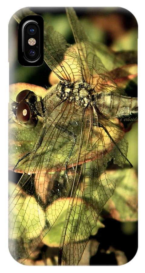 Dragonfly IPhone X Case featuring the photograph Dragonfly Wingspan by Chris Berry