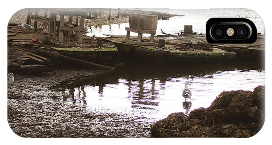 Oyster Farm IPhone X Case featuring the photograph Drakes Bay Oyster Farm by Hiroko Sakai