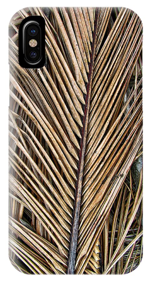 Branch IPhone X Case featuring the photograph Dried Palm Fronds by Mark Sellers