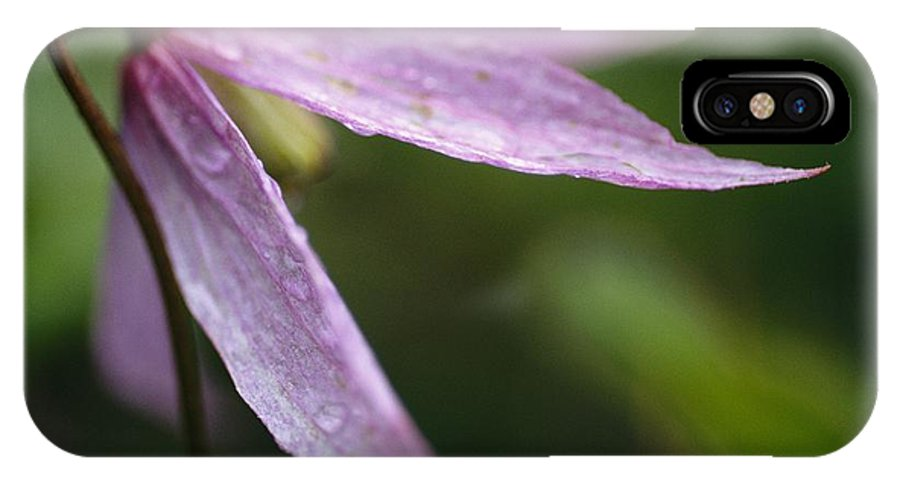 North America IPhone X / XS Case featuring the photograph Droplets Of Dew On A Pink Wildflower by Michael Melford
